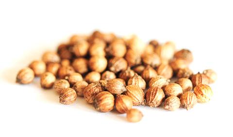 kolendra nasiona